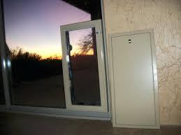 sliding door pet door dog doors for french doors for best pet door gallery pet doors sliding door pet