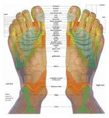 Top Of Foot Reflex Chart Free Printable Reflexology Charts Reflexology Chart