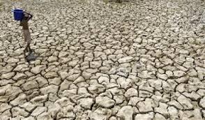 water scarcity essay
