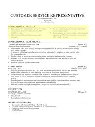 resume profile for customer service how to write a resume profile nardellidesign com