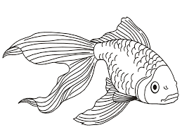 Small Picture Online Goldfish Coloring Page 65 About Remodel Coloring Site with