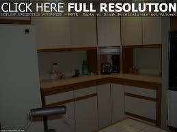 Kitchen Cabinets With No Doors 15 Modern Kitchen With Stainless Steel Cabinets 2100