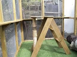 outdoor cat furniture best outdoor cat tree house diy outdoor cat tree