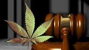 Marijuana Vending Machine Company Extraordinary Marijuana Vending Machine Companies Sue Jerry Cox KATV