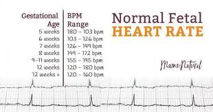 Normal Fetal Heart Rate By Week Chart Www