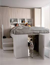 dog bedroom. cama closet dog more bedroom g