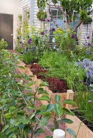 Small Picture 13 best Urban Gardening images on Pinterest Gardening Urban