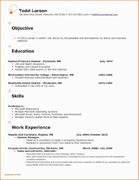 Resume Bullet Points For Sales New Retail Sales Person Resume Sample