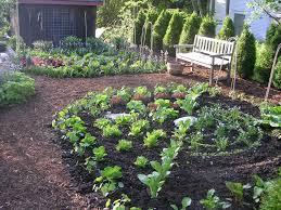 Only Backyard Vegetable Garden Edible Garden Design Layout Ideas ...