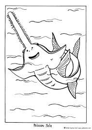 Small Picture Seaweeds coloring pages Hellokidscom