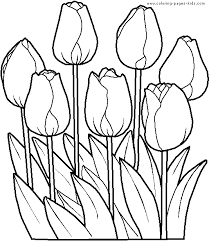 Spring Flower Coloring Pages Download Spring Flowers Coloring Pages