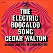 The Electic Boogaloo Song