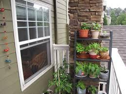 apartment patio garden. Balcony Vegetable Garden Ideas For Apartments Module In Outdoor Vertical Design Gardening Idea . Apartment Patio