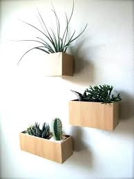 plant hook wall wall mount plant holder fascinating plant holders for walls with additional interior designing