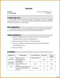 Resume Job Objective Examples Job Objective Example Resume Krida 23