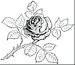 Small Coloring Pages Coloring Pages Best