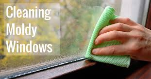 cleaning moldy windows including gl