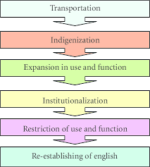 Life Cycle Of Nonnative Englishes 7 16 Download