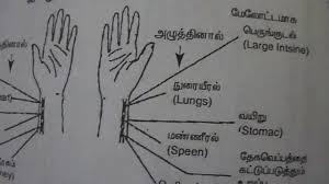 Tamil Acupuncture Pulse Diagnosis Healer V Saravanan