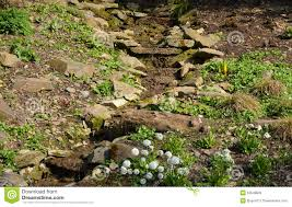 Small Picture Small Rock Garden Stock Photo Image 14910660