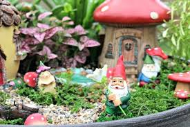 how to plant a fairy garden gnomes mini