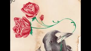 A Magpie Carrying Roses Drawn By Paul Alexander Thornton Youtube