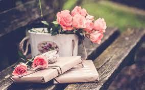 Wallpaper Pink rose flowers, gift ...