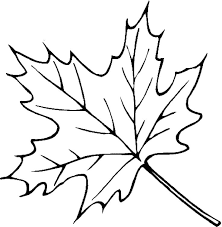 Small Picture 20 best leaves coloring pages images on Pinterest Coloring