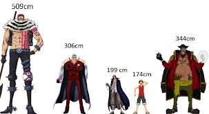 One Piece Height Chart So Seriously The New Databook Revealed Some Heights Of