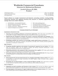 Sample Summary Statement Resume 15 Sample Summary Statements For Resumes E Mail Statement