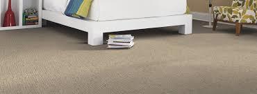 High Resolution Carpet Haze Carpeting