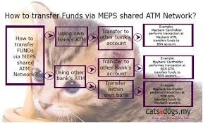 bank in payment my based online pet supply if no notification of payment is received after the period your order will be cancelled and my reserves