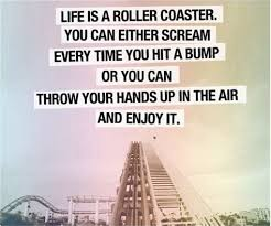 Image result for rollercoaster depression quote
