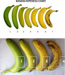 Banana Ripeness Chart Non Invasive Determination Of Surface Features Of Banana