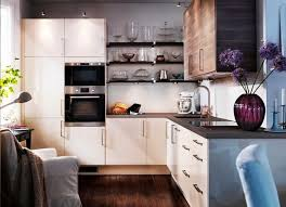 contemporary kitchen cabinets in a small kitchen