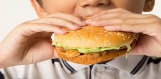 effects of junk food essay essay on effects of eating too much  essay effects junk food children essay effects junk food children