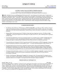 Successful Resume Examples 2012