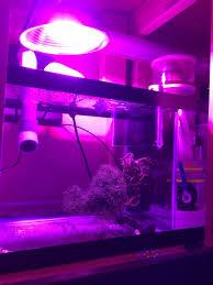 Ufo Grow Light Refugium Budget Refugium Light Reef2reef Saltwater And Reef