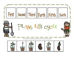 Free Plant Life Cycle Worksheet Printables New Best 25 Plant Parts ...