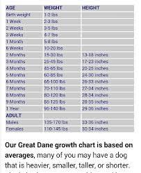St Bermastiff Growth Chart Pin On Mans Best Friend