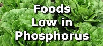 Low Potassium Foods List Chart Foods Low In Phosphorus For People With Kidney Disease