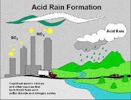 acid rain by olivia beard