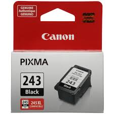 Canon Pg 243 Black Ink Cartridge Walmart Com
