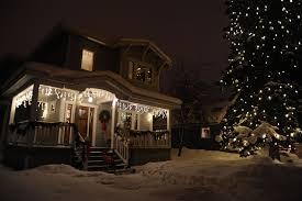 Christmas Tree Lighting Anchorage Rosie Wearing Her Red Jacket Exploring The Neighbors Snowy