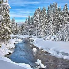 Browse hotels, things to do, restaurants, events & more in south lake tahoe. Winter Wonderland Lake Tahoe Winter Winter Pictures Winter Scenes