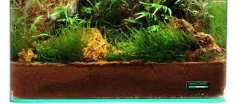 active substrates blog olibetta