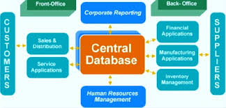 Enterprise Resource Planning Erp System Term Paper