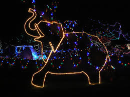 Zoo Lights Tucson Zoo Lights Reid Park Zoo