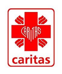 Znalezione obrazy dla zapytania caritas logo