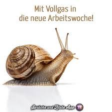 Urlaub Zu Ende Sprüche Pinterest Humor Funny Und Funny